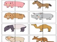 Kleurplaten Thema Dieren.123 Lesidee Dieren